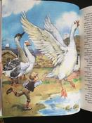 Чудесное путешествие Нильса с дикими гусями #163, Елена М.