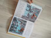Живая шляпа (ил. И. Семёнова) | Носов Николай Николаевич #10, Надежда