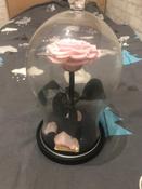 Долговечная стабилизированная роза в стеклянной колбе Premium X  - Notta & Belle #8, Светлана К.