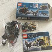 Конструктор LEGO Harry Potter 75951 Побег Грин-де-Вальда #4, Светлана