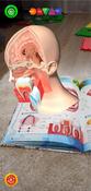 Анатомия. 4D Энциклопедия в дополненной реальности #9, Хабибрахманова Алия