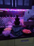 Шоколадный фонтан Clatronic SKB 3248 #6, Мария М.