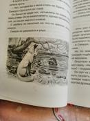 Чудесное путешествие Нильса с дикими гусями #145, Ирина
