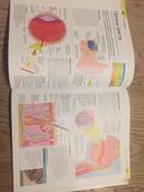 Как объяснить ребенку науку. Иллюстрированный справочник для родителей по биологии, химии и физике | Вордерман Кэрол #7, Юлия М.
