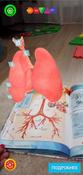 Анатомия. 4D Энциклопедия в дополненной реальности #6, Хабибрахманова Алия