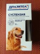 Суспензия Празител плюс от глистов для собак средних и крупных пород #6, Marina