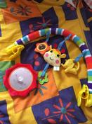 Развивающий центр Жирафики Дуга, с 5 съемными игрушками, 939625 #5, Виктория М.