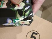 Подарочный набор Palmolive Роскошь масел: Гель для душа Инжир, 250 мл + Гель для душа Авокадо, 250 мл #1, А Алексей