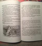 Чудесное путешествие Нильса с дикими гусями #158, Самойленков И.