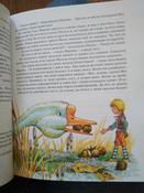 Чудесное путешествие Нильса с дикими гусями #10, Дарья С.