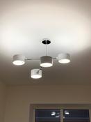 Потолочный светильник Lumion  ASHLEY 3742/4C , E27, 240 Вт #1, Анна К.
