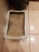 Туалет ( лоток ) с бортом , 40*27*11 см, серый #1, Ольга К.
