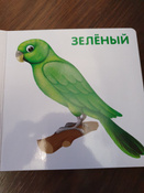 Книжки-картонки. Цвета в природе #1, Аликова Елизавета