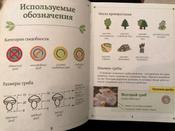 За грибами. Карманный атлас-определитель | Ильина Татьяна Александровна #9, Анна
