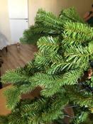 Искусственная Елка National Tree Company, Из ПВХ, 213 см #4, Прозорова Н.