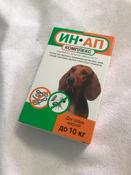 Капли ИН-АП от блох, клещей и глистов комплекс для собак массой до 10 кг #9, Екатерина Я.