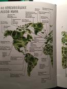 Сила леса. Как деревья помогают нам обрести здоровье и радость (комплект)   Нет автора #2, Ирина Ч.