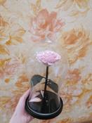Долговечная стабилизированная роза в стеклянной колбе Premium X  - Notta & Belle #6, Андрей Б.