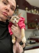 Толстовка с капюшоном для собак и кошек, Цвет: Розовый, Размер: XS #4, Евгения Е.