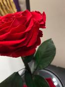 Букет из стабилизированных цветов Notta & Belle Роза, 26 см, 753 гр #3, Мария К.