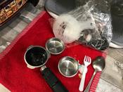 Кофеварка электрическая Рожковая Polaris PCM 1535E Adore Cappuccino, серебристый #4, Владислав Е.