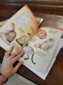 Энциклопедия для детского сада. Три энциклопедии для девочек #6, Екатерина