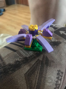 Конструктор LEGO Classic 10696 Набор для творчества среднего размера #217, Соболева Н.