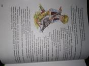 Чудесное путешествие Нильса с дикими гусями #52, Юлия Б.