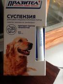 Суспензия Празител плюс от глистов для собак средних и крупных пород #2, Надбережная Алайа