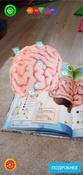 Анатомия. 4D Энциклопедия в дополненной реальности #5, Хабибрахманова Алия