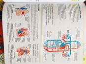 Как объяснить ребенку науку. Иллюстрированный справочник для родителей по биологии, химии и физике | Вордерман Кэрол #12, Евгения T