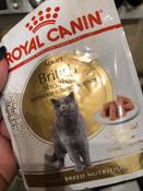 """Консервы Royal Canin """"British Shorthair Adult"""", для кошек британской породы старше 12 месяцев, мелкие кусочки в соусе, 85 г, 12 шт #10, Вольнягина Ольга"""
