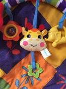 Развивающий центр Жирафики Дуга, с 5 съемными игрушками, 939625 #8, Виктория М.