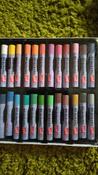 """Пастель масляная художественная для рисования Brauberg Art """"Classic"""", набор 24 цвета, утолщенная, круглое сечение #12, Елагина Анна"""