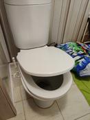 Сиденье для унитаза FIORE SoftClose (микролифт) #5, Ренат Т.