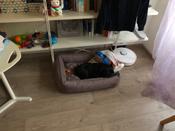 Лежанка для животных Bedfor со съемными чехлами, цвет Мокко, размер 70 х 50 см #12, Андрей