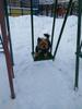 Фото к коментарию #8984633 от Степанова Алла Семеновна