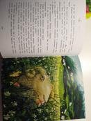 Чудесное путешествие Нильса с дикими гусями #18, Екатерина Ч.