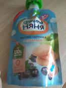 Фрутоняня пюре яблоко, черника печенье с 6 месяцев, 90 г #121, Венера В.