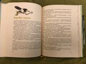 Муфта Полботинка и Моховая Борода;Муфта, Полботинка и Моховая Борода. Книги 1, 2 | Рауд Эно Мартинович #84, Екатерина