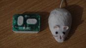 Игрушка для животных Hexbug Мышка на радиоуправлении белая #6, Мистер Г