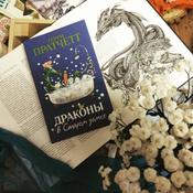 Драконы в Старом замке и другие истории #1, Panda In Box