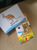 Росмэн Обучающие карточки Животные #13, Саша