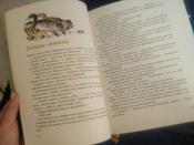 Муфта Полботинка и Моховая Борода;Муфта, Полботинка и Моховая Борода. Книги 1, 2 | Рауд Эно Мартинович #45, Юлия