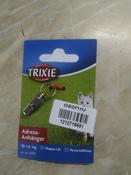 "Медальон-адресник ""Trixie"", для кошек, цвет: серебристый #14, Анна А."