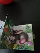 Почему надо чистить зубы (миниатюрное издание) | Мигунова Наталья Алексеевна #6, Шарипова Рина Марсовна