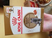 """Консервы Royal Canin """"British Shorthair Adult"""", для кошек британской породы старше 12 месяцев, мелкие кусочки в соусе, 85 г, 12 шт #15, Елена"""