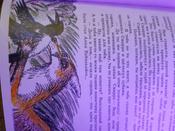 Чудесное путешествие Нильса с дикими гусями #140, Анна