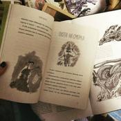 Драконы в Старом замке и другие истории #2, Panda In Box