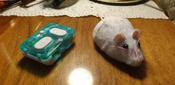 Игрушка для животных Hexbug Мышка на радиоуправлении белая #2, Екатерина Б.